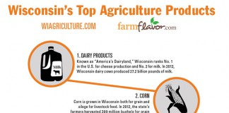 Wisconsin Top 10 Ag Commodities infographic