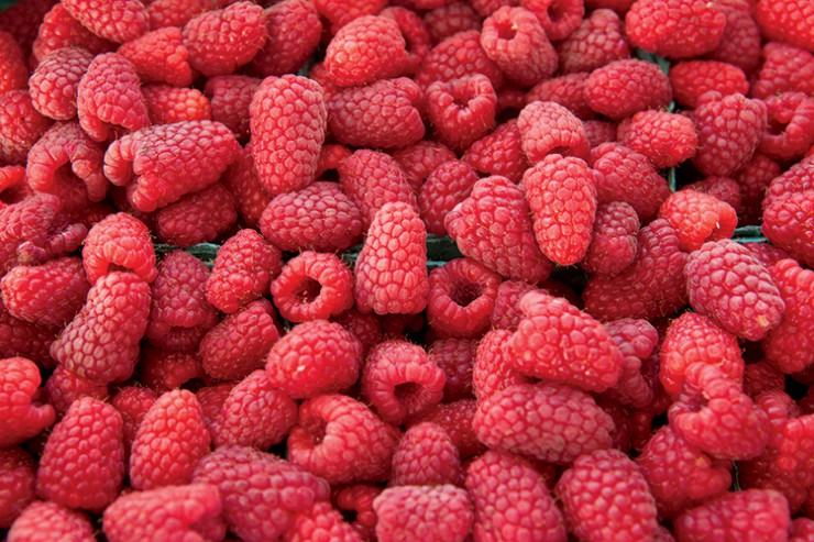 Raspberries at farmers market  in  Oregon