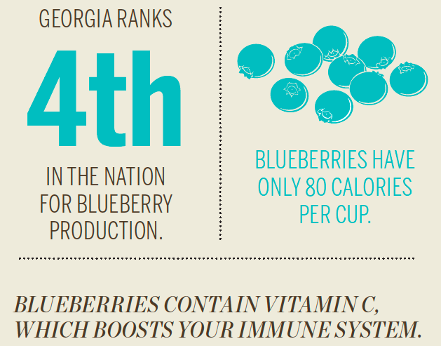 Georgia Blueberry [Infographic]