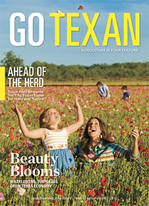 Go Texan 2015 cover