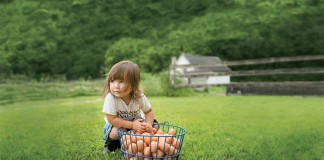 Organic Valley cute kid