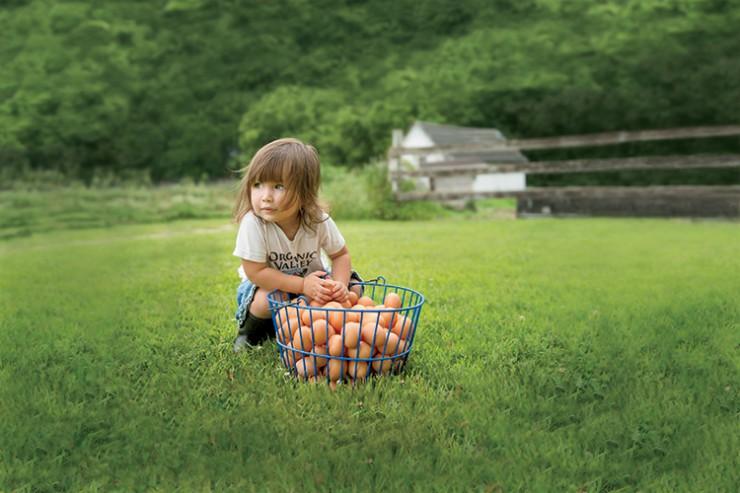 Organic Valley cute kid
