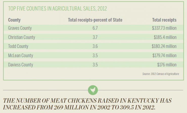Kentucky Agriculture [INFOGRAPHIC]