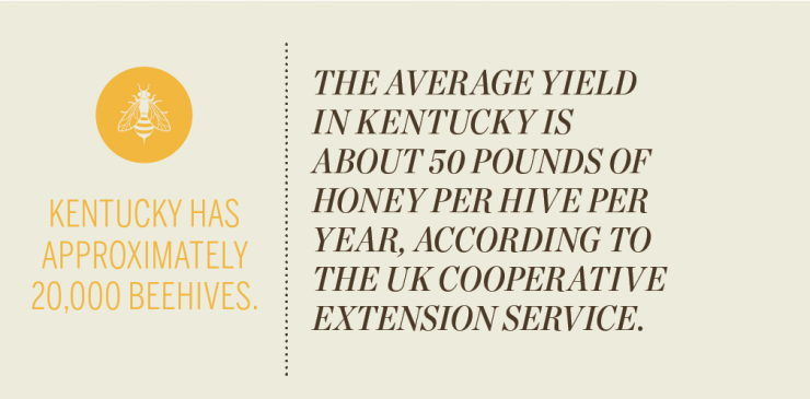 Kentucky Honey Bee [INFOGRAPHIC]