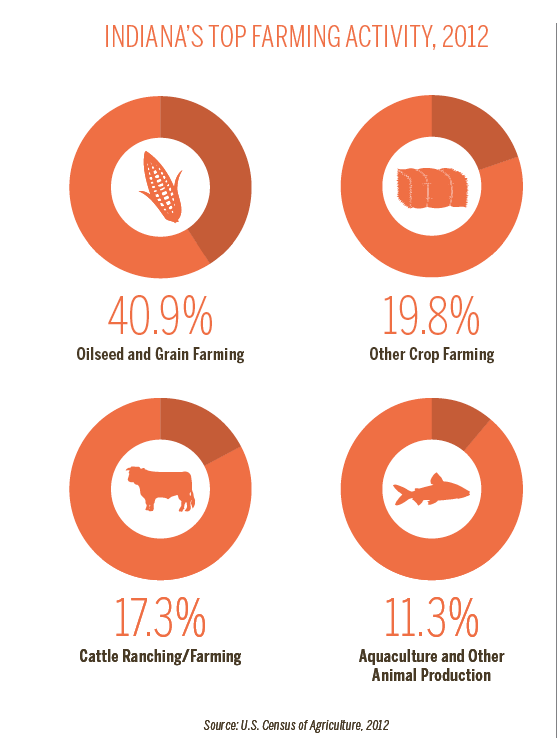 Indiana Farming Activity infographic