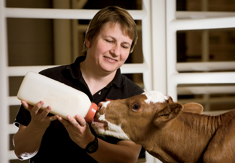 Our Veterinary Health Care Team