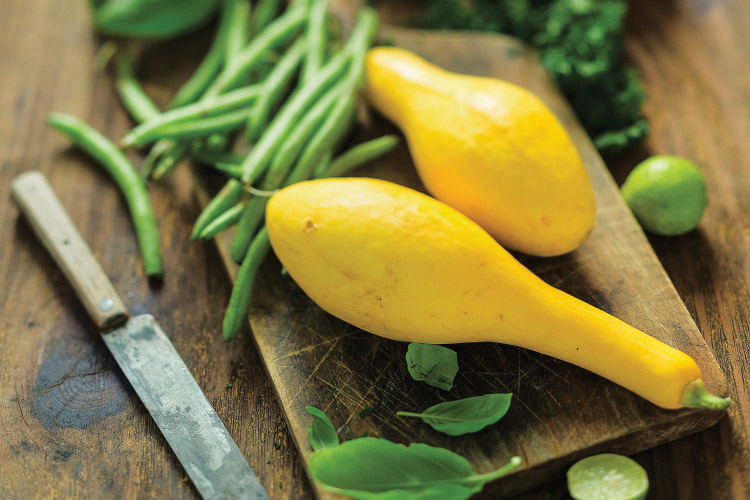 whatto do with yellow squash from garden